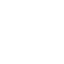 Fried onions icon