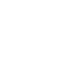 Mixed vegetables icon