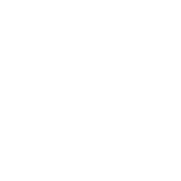 Key lime icon