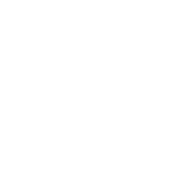 Peppermint oil icon
