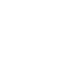 Lye flakes icon