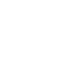 Cornflour icon