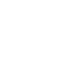 Protein pasta icon