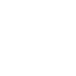 Figs icon