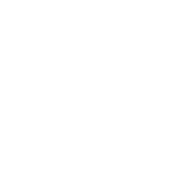 Anise seeds icon