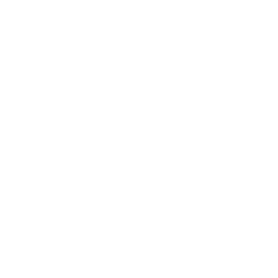 Dried figs icon