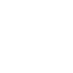 Hot smoked salmon icon