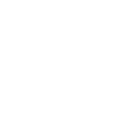 Dried dill icon