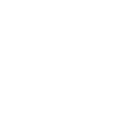 Applesauce icon