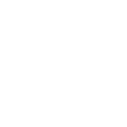 Pearl sugar icon