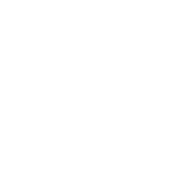 Ground almonds icon
