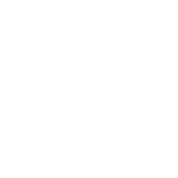 Demerara sugar icon