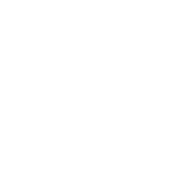 Udon noodles icon