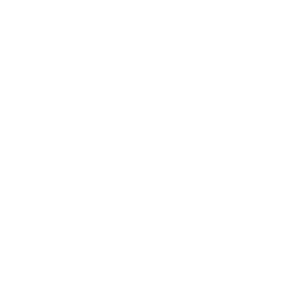 Dulse sea vegetable flakes icon
