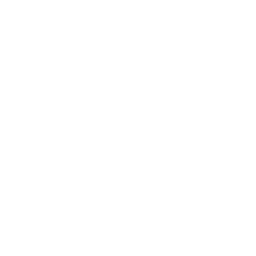 Pumpkin purée icon